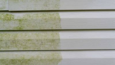 exterior wall cleaning from house washing services